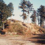 発掘調査前の王塚古墳