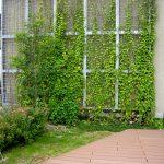 特別養護老人ホーム特巣-壁面緑化