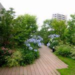 特別養護老人ホーム特巣-屋上緑化
