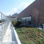 熊本大学外来診療棟屋上-03