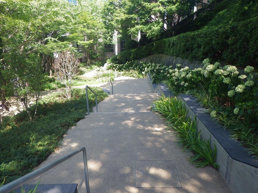 九州産業大学 図書館-2号館周辺緑化-01
